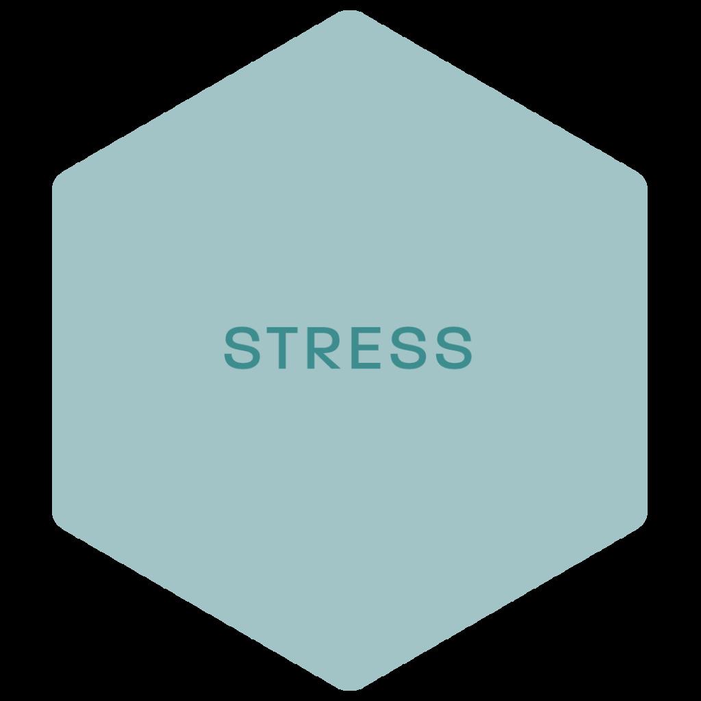 de anti stress behandeling voor ontspanning en rust